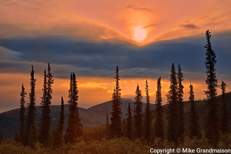Ogilvie Mountains at km 167 on the Dempster Highway<br /> Dempster Highway<br /> Yukon<br /> Canada