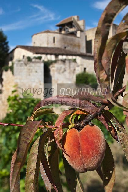 Europe/France/Midi-Pyrénées/32/Gers/Larressingle: Plus petite cité fortifiée de France et pêches de vigne -Plus Beaux Villages de France