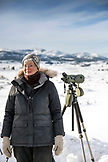 USA, Wyoming, Yellowstone National Park, wolf-watcher Kirsty Peake studies a wolf pack in Blacktail Deer Plateau