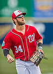 5 March 2016: Washington Nationals outfielder Bryce Harper trots back to the dugout after getting the 3rd out of the 5th inning during a Spring Training pre-season game against the Detroit Tigers at Space Coast Stadium in Viera, Florida. The Nationals defeated the Tigers 8-4 in Grapefruit League play. Mandatory Credit: Ed Wolfstein Photo *** RAW (NEF) Image File Available ***