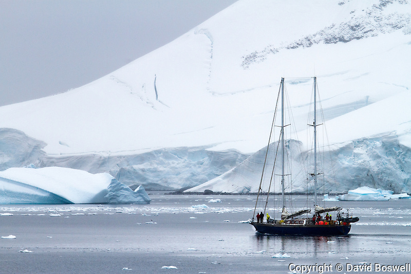 A sailboat navigates the ice under power near the Antarctic Peninsula.