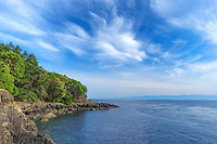 WASJ_D141 - USA, Washington, San Juan Island, Lime Kiln Point State Park, Pacific madrone trees and rocky shoreline beneath cirrus filled sky.