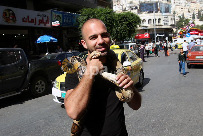A Palestinian man hold a snake at a street market during the preparation for the upcoming Eid-al-Adha, or ''Feast of Sacrifice,'' in the West Bank city of Nablus on October 14, 2013. Millions of Muslims around the world celebrate Eid al-Adha or Feast of the Sacrifice, which marks the end of the annual hajj or pilgrimage to Mecca and celebrates Abraham's readiness to sacrifice his son to God. Photo by Nedal Eshtayah