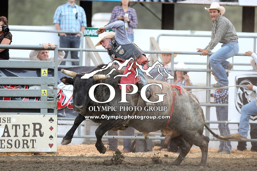 21 Aug 2013:  Cheyne Olney riding the bull Blue Light Special was not able to score in the first round of competition of the Extreme Bulls Wednesday at the Kitsap County Fair and Stampede Rodeo in Bremerton, Washington.