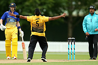 Wellington's Jeetan Patel appeals during the Ford Trophy One Day match (round five) between Wellington Firebirds and Otago Volts at Bert Sutcliffe Oval in Lincoln, New Zealand on Friday, 29 November 2019. Photo: Martin Hunter / lintottphoto.co.nz