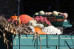 Fall Decorations in a wooden wagon full of gourds pumpkins corn stalks and flowers Branson Missouri