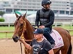 LOUISVILLE, KENTUCKY - APRIL 30: Motion Emotion , trained by Tom Van Berg, exercises in preparation for the Kentucky Oaks at Churchill Downs in Louisville, Kentucky on April 30, 2019. Scott Serio/Eclipse Sportswire/CSM