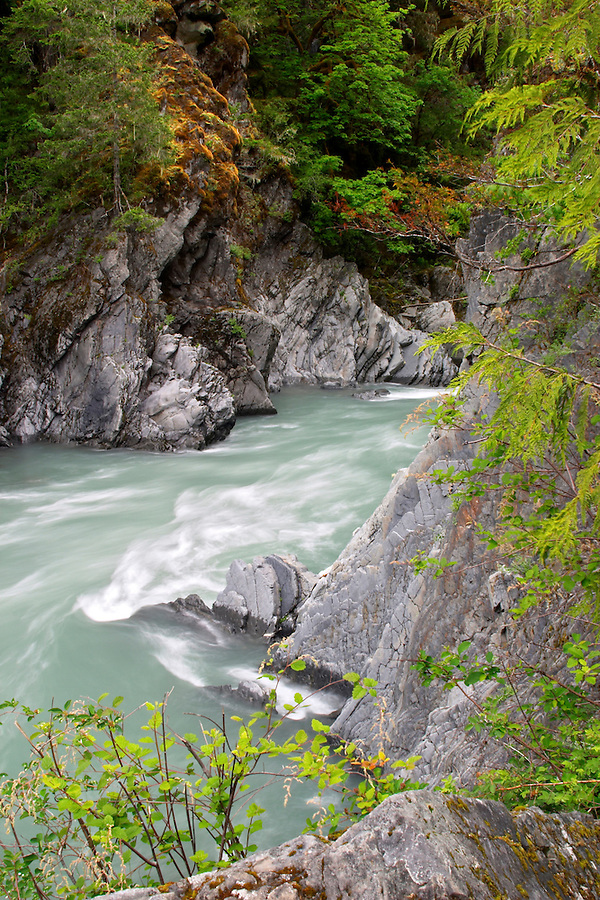 The Elwha River flowing through Goblin Gate, Rica Canyon Trail, Olympic National Park, Olympic Peninsula, Clallam County, Washington, USA
