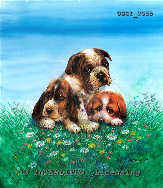 GIORDANO, CHRISTMAS ANIMALS, WEIHNACHTEN TIERE, NAVIDAD ANIMALES, paintings+++++,USGI2665,#XA# dogs,puppies