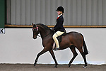 Ridden pony classes. Unaffiliated 'Winter Woolies' Showing. Brook Farm Training Centre. Essex. UK. 28/10/2018. ~ MANDATORY Credit Garry Bowden/Sportinpictures - NO UNAUTHORISED USE - 07837 394578