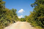 Staubstrasse zwischen Milohnici und Poljica. Dust road between Milohnici and Poljica. Krk Island, Dalmatia, Croatia. Insel Krk, Dalmatien, Kroatien. Krk is a Croatian island in the northern Adriatic Sea, located near Rijeka in the Bay of Kvarner and part of the Primorje-Gorski Kotar county. Krk ist mit 405,22 qkm nach Cres die zweitgroesste Insel in der Adria. Sie gehoert zu Kroatien und liegt in der Kvarner-Bucht suedoestlich von Rijeka.