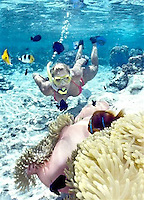 TAE-French Polynesia & Cook Island Underwater Images