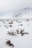 USA, California, Mammoth, a view of the mountains freshly covered in snow along I395 between Bishop and Mammoth