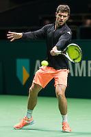 ABN AMRO World Tennis Tournament, Rotterdam, The Netherlands, 14 februari, 2017, Alexander Zverev (GER)<br /> Photo: Henk Koster