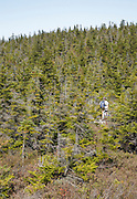 Hikers explore the summit of Whitewall Mountain in the White Mountains of New Hampshire.