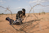 Kenya - Dadaab – 21st July 2011. A Somali refugee bringing wood back to the tent in order to isolate the tent from the rest of the camp as she has arrived only 16 days ago.