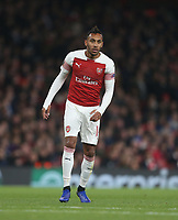 Arsenal's Pierre-Emerick Aubameyang<br /> <br /> Photographer Rob Newell/CameraSport<br /> <br /> UEFA Europa League Group E - Arsenal v Sporting CP - Thursday 8th November 2018 - Arsenal Stadium - London<br />  <br /> World Copyright © 2018 CameraSport. All rights reserved. 43 Linden Ave. Countesthorpe. Leicester. England. LE8 5PG - Tel: +44 (0) 116 277 4147 - admin@camerasport.com - www.camerasport.com