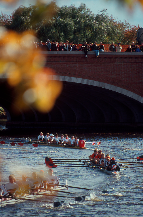 Rowing, Cambridge, Massachusetts, College crews rowing the Head of the Charles Regatta, Charles River,