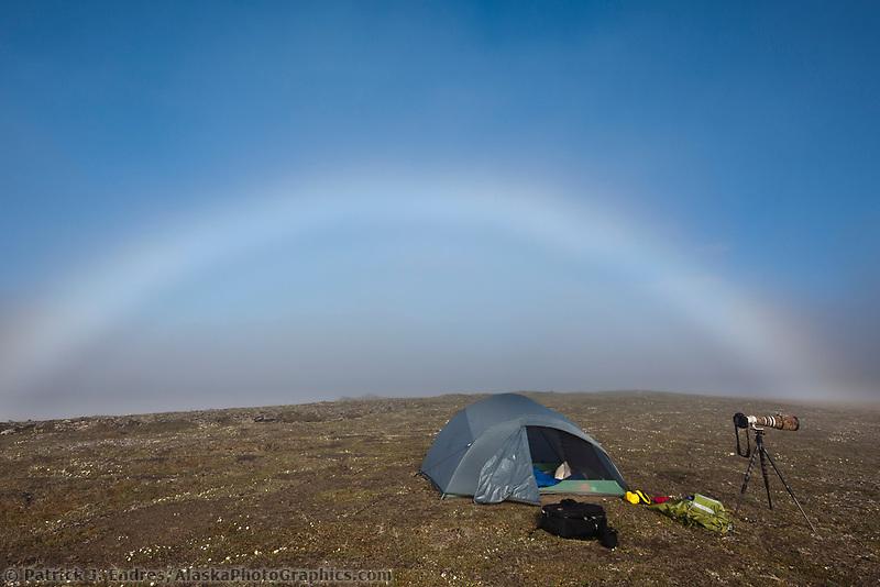 Fog bow, Utukok uplands, National Petroleum Reserve Alaska, Arctic, Alaska.