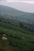 Mist rolls over the hills along the southwestern coast of Ireland.<br />