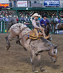 """Joe Lufkin from Sallisaw, OK competes in the Saddle Bronc Riding event during Purple Night at the Rodeo on Tuesday night, June 21, 2016.  """"Man Up Crusade Night"""" encouraged rodeo goers to wear purple for advocacy to stop domestic violence."""