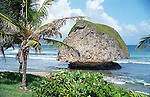 Mushroom rock on beautiful Bathsheba Beach on the east coast of Barbados Island in the Caribbean.