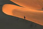Death Valley Mesquite Flat sand dunes
