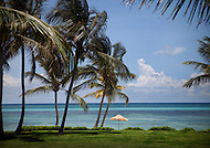 A lone umbrella provides refuge from the Carribean sun along the blue waters of a palm-lined beach in the Dominican Republic.