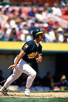 OAKLAND, CA - Mike Aldrete of the Oakland Athletics bats during a game at the Oakland Coliseum in Oakland, California in 1994. Photo by Brad Mangin