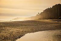 Man photographing in golden misty light at Bruce Bay on the West Coast, South Island, New Zealand - stock photo, canvas, fine art print