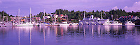Ucluelet, BC, Vancouver Island, British Columbia, Canada - Canadian Princess Resort and Marina, Panoramic View