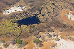 Botswana, Moremi Game Reserve, Okavango Delta, aerial view