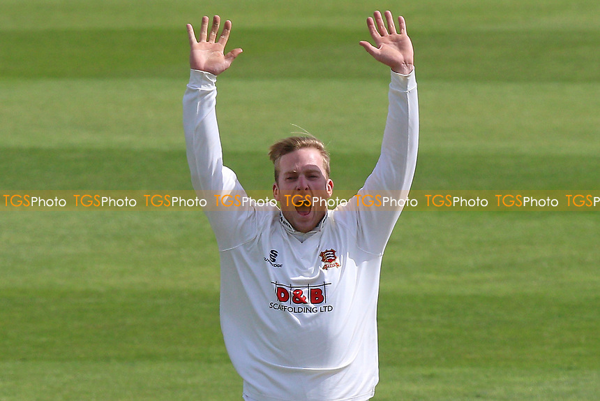 Simon Harmer of Essex claims the wicket of Dean Elgar during Somerset CCC vs Essex CCC, Specsavers County Championship Division 1 Cricket at The Cooper Associates County Ground on 15th April 2017
