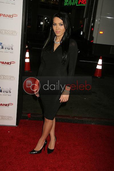 Milana Aslani<br /> at the 2nd Annual 3D Creative Arts Awards, Chinese Theatre, Hollywood, CA. 02-09-11<br /> David Edwards/DailyCeleb.com 818-249-4998
