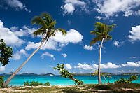 Post Hurricane <br /> Honeymoon Beach<br /> Virgin Islands National Park<br /> St. John, US Virgin Islands Honeymoon Beach post hurricanes<br /> Virgin Islands National Park<br /> St. John<br /> US Virgin Islands