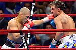 Miguel Cotto vs Paulie Malignaggi - WBO Junior Welterweight Title - 06.10.06