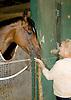 Havre de Grace at The Jones barn at Delaware Park with Cindy Jones on 9/27/11