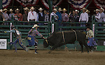 Pistol Robinson from Coolidge, TX runs away from the bull while competing in the Bull Riding event during Wolf Pack Night at the Reno Rodeo on Wednesday, June 22, 2016.
