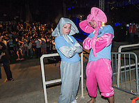 From left, Wellesley Daniels '16 and Asa Welch '16 show off their elephant outfits, Springfest, April 4, 2015 at the Remsen Bird Hillside Theater.<br /> (Photo by Marc Campos, Occidental College Photographer)