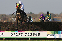 Race winner Nozic ridden by Gemma Gracey-Davison jumps the last in the Plumpton Annual Members Handicap Chase