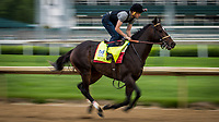 LOUISVILLE, KY - APRIL 30: Mccraken gallops at Churchill Downs on April 30, 2017 in Louisville, Kentucky. (Photo by Alex Evers/Eclipse Sportswire/Getty Images)