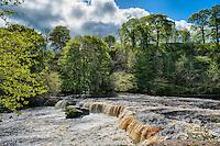 Askrigg Falls, Askrigg, North Yorkshire.