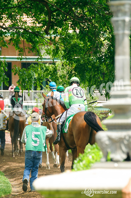 Charlie Again leaving the paddock at Delaware Park on 5/30/15
