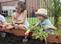 NWA Democrat-Gazette/DAVID GOTTSCHALK Iris Scharnhorst (left), 12, and Arlo Lane, 6, plant  <br /> Wednesday, August 8, 2018, with students participating in the Washington Elementary School Garden Club Back to School Summer Camp at the school in Fayetteville. The campers are prepping and planting a fall garden at the school and participating in recreational and educational activities in the surrounding neighborhood.