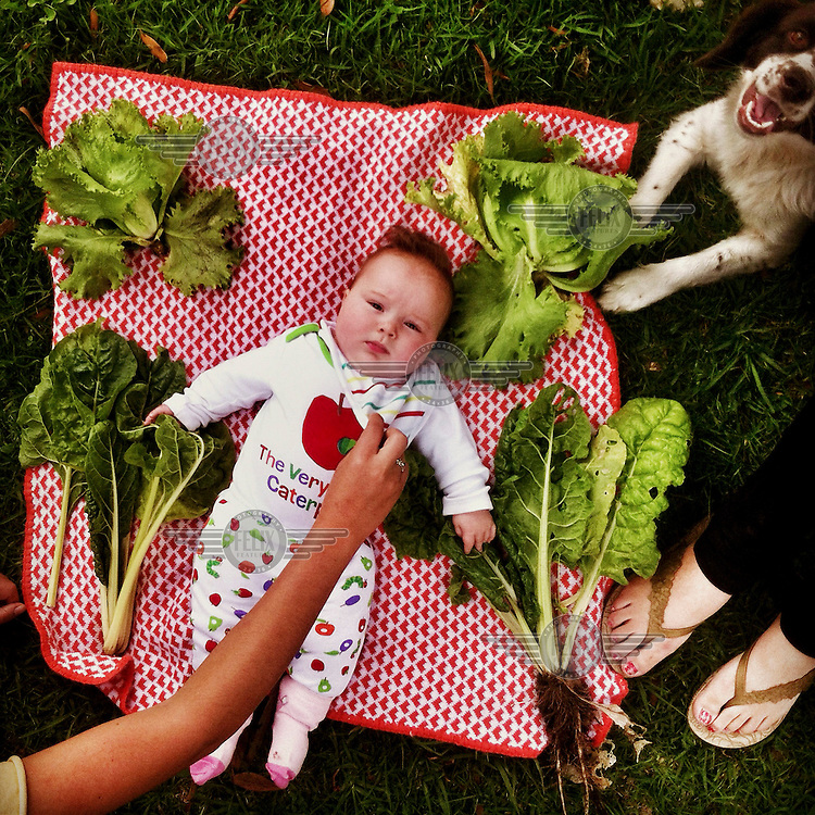 La Vecina Savy lies on a blanket surrounded by freshly picked salad leaves.
