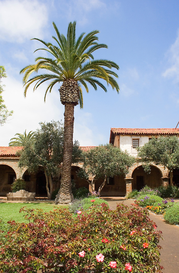 Gardens and palm tree at San Juan Capistrano