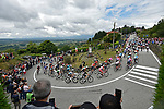 The peloton start to climb the Colma di Sormano during Stage 15 of the 2019 Giro d'Italia, running 232km from Ivrea to Como, Italy. 26th May 2019<br /> Picture: Fabio Ferrari/LaPresse | Cyclefile<br /> <br /> All photos usage must carry mandatory copyright credit (© Cyclefile | Fabio Ferrari/LaPresse)