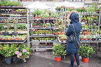 Shoppers buy plants at the Union Square Greenmarket in New York on a rainy Friday, May 6, 2016.  (© Richard B. Levine)