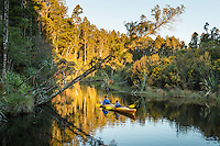 Kayaking in Okarito Lagoon, Westland Tai Poutini National Park, West Coast, UNESCO World Heritage Area, South Westland, New Zealand, NZ