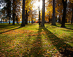 Idaho, North, Coeur d'Alene. Long evening shadows in city park autumn.